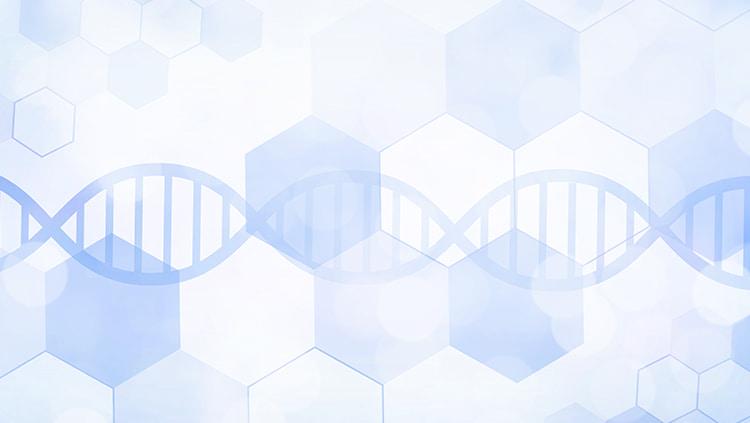 遺伝子情報(DNA)と染色体異常