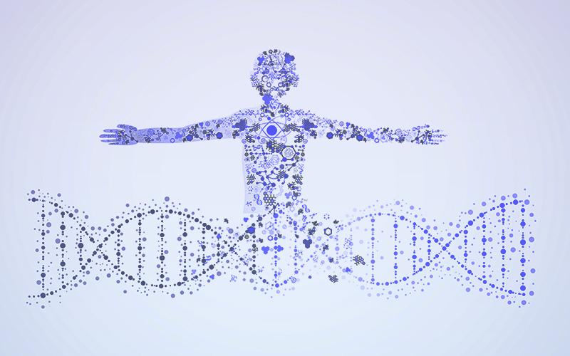 ジストロフィン遺伝子とその異常について