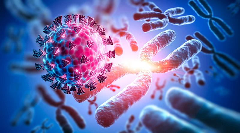 【論文】新型コロナウイルスと遺伝に関する論文の訳 #2