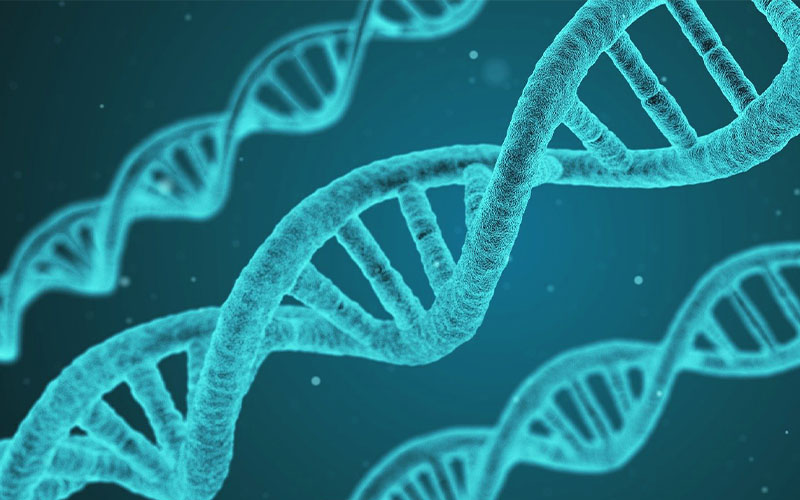 最も割合の高い染色体異常―ダウン症児を取り巻く環境について